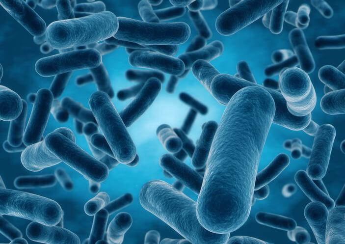 Bifidobakterie i ich ochronne działanie na florę jelitową